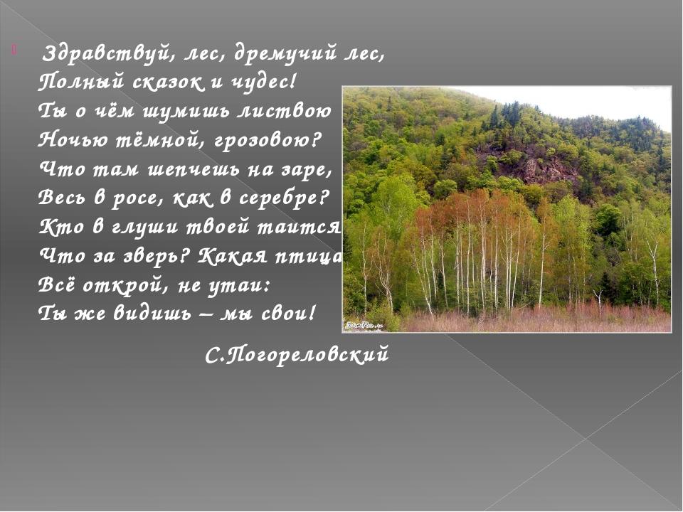 какие леса занимают большую территорию в россиикак взять кредит с плохой кредитной историей в уфе в 150000