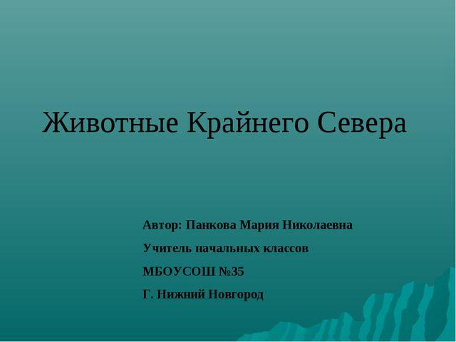 Животные Крайнего Севера Автор: Панкова Мария Николаевна Учитель начальных кл...
