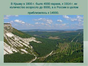 В Крыму в 1800 г. было 4000 караев, к 1914 г. их количество возросло до 8000,