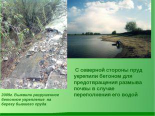 С северной стороны пруд укрепили бетоном для предотвращения размыва почвы в