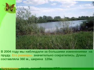 В 2004 году мы наблюдали за большими изменениями на пруду. Его размеры значит
