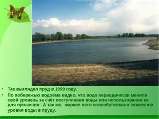 Так выглядел пруд в 1999 году. По побережью водоёма видно, что вода периодиче
