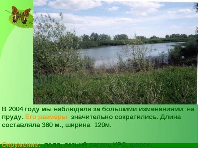 В 2004 году мы наблюдали за большими изменениями на пруду. Его размеры значит...