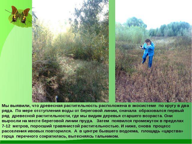 Мы выявили, что древесная растительность расположена в экосистеме по кругу в...