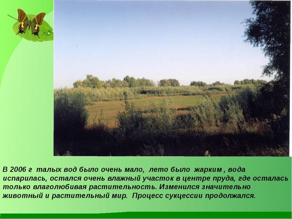 В 2006 г талых вод было очень мало, лето было жарким , вода испарилась, остал...