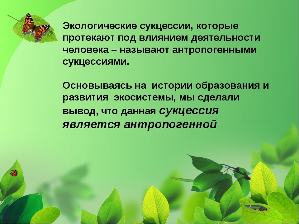 Экологические сукцессии, которые протекают под влиянием деятельности человека...