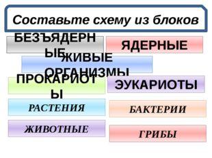 Составьте схему из блоков ЖИВЫЕ ОРГАНИЗМЫ БЕЗЪЯДЕРНЫЕ ПРОКАРИОТЫ ЯДЕРНЫЕ ЭУКА