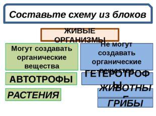 Составьте схему из блоков ЖИВЫЕ ОРГАНИЗМЫ Не могут создавать органические вещ