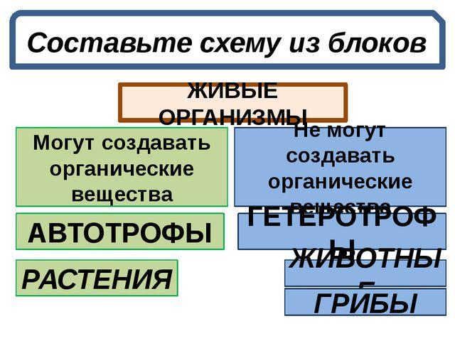 Составьте схему из блоков ЖИВЫЕ ОРГАНИЗМЫ Не могут создавать органические вещ...
