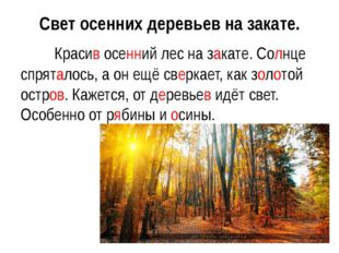 Свет осенних деревьев на закате. Красив осенний лес на закате. Солнце спрят