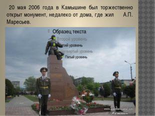 20 мая 2006 года в Камышине был торжественно открыт монумент, недалеко от до