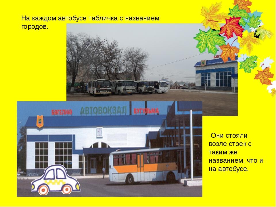 На каждом автобусе табличка с названием городов. Они стояли возле стоек с так...