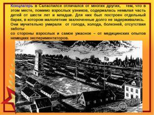 Концлагерь в Саласпилсе отличался от многих других, тем, что в этом месте, п