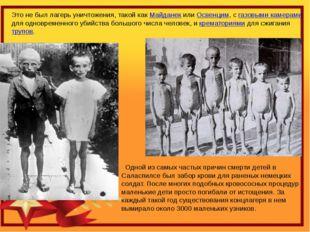 Это не был лагерь уничтожения, такой как Майданек или Освенцим, с газовыми ка