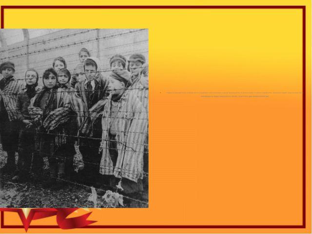 Первые концлагеря были исправительно-трудовыми и располагались в самом Треть...