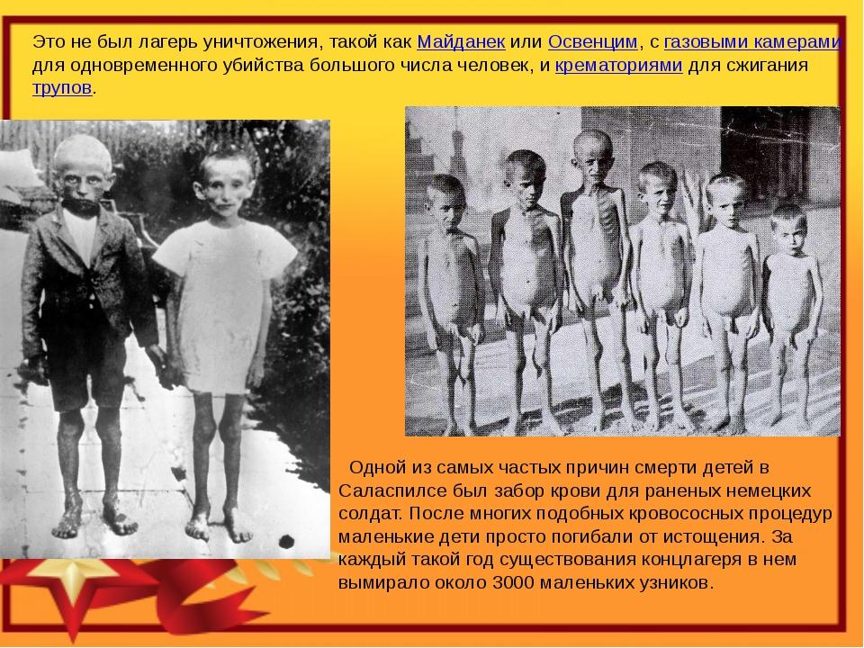 Это не был лагерь уничтожения, такой как Майданек или Освенцим, с газовыми ка...