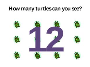 How many turtles can you see? 12