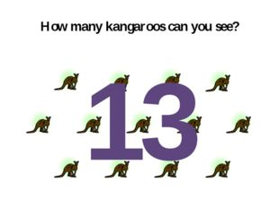 How many kangaroos can you see? 13