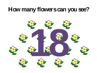 How many flowers can you see? 18