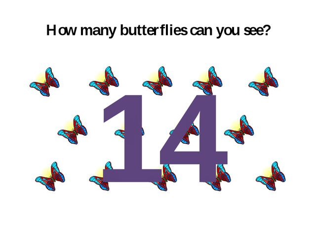 How many butterflies can you see? 14