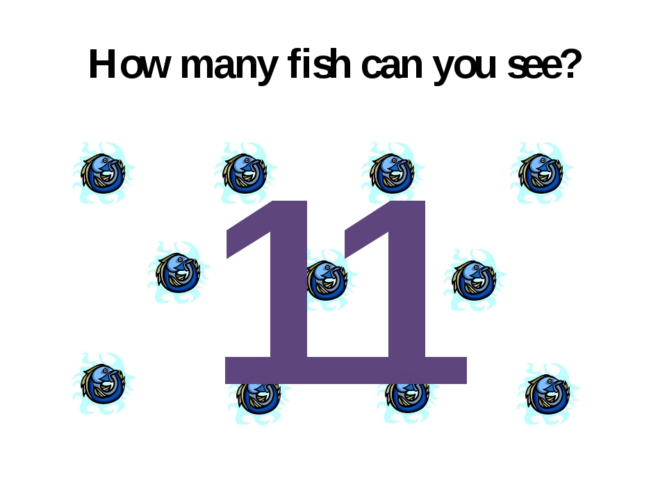 How many fish can you see? 11