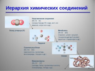 Иерархия химических соединений * Неорганические соединения (Mr=18―64) (оксид