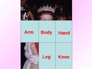 Body Arm Leg Hand Knee