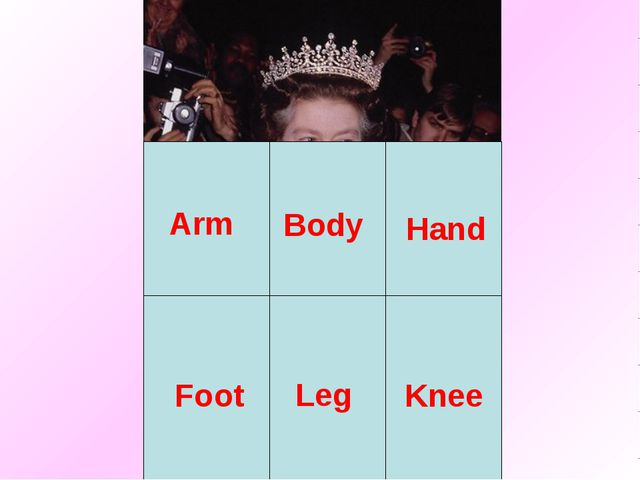 Body Arm Leg Hand Foot Knee
