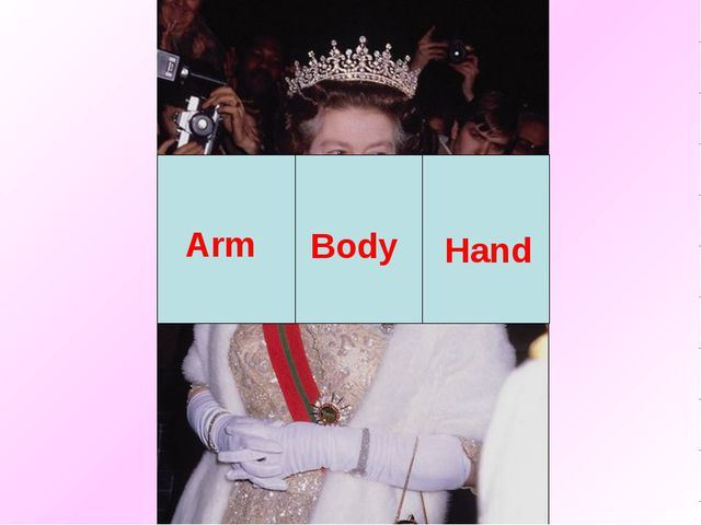 Body Arm Hand