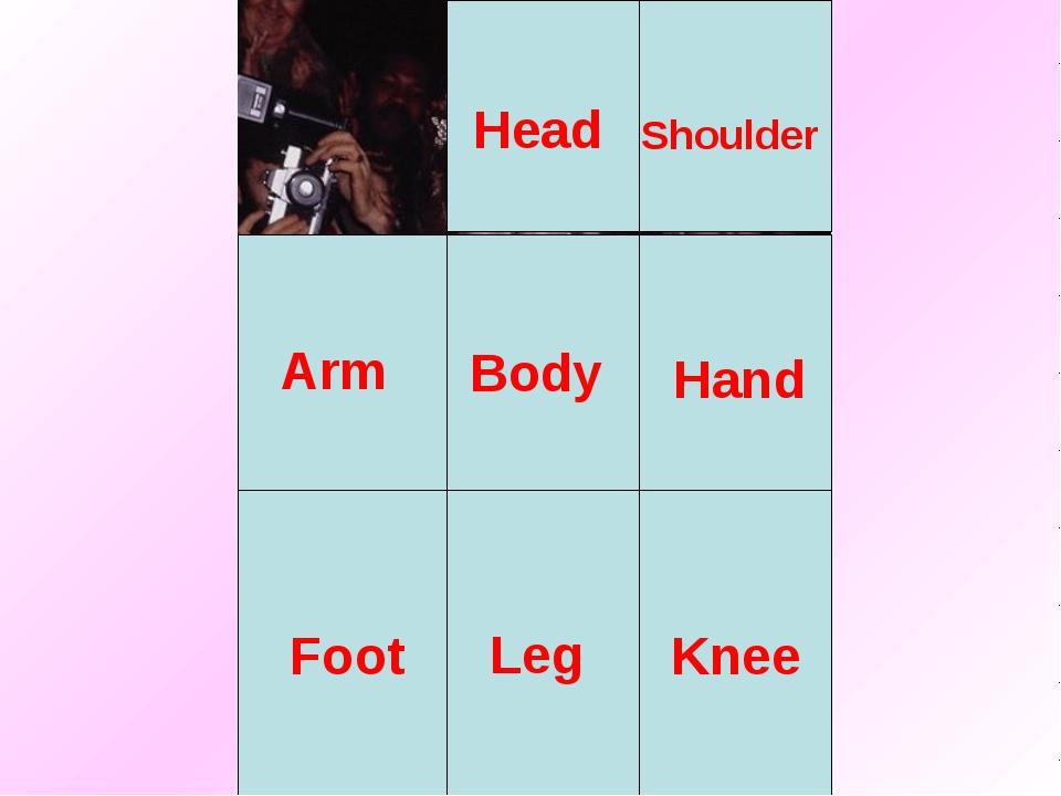 Head Body Arm Leg Shoulder Hand Foot Knee