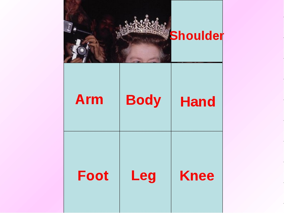 Body Arm Leg Shoulder Hand Foot Knee