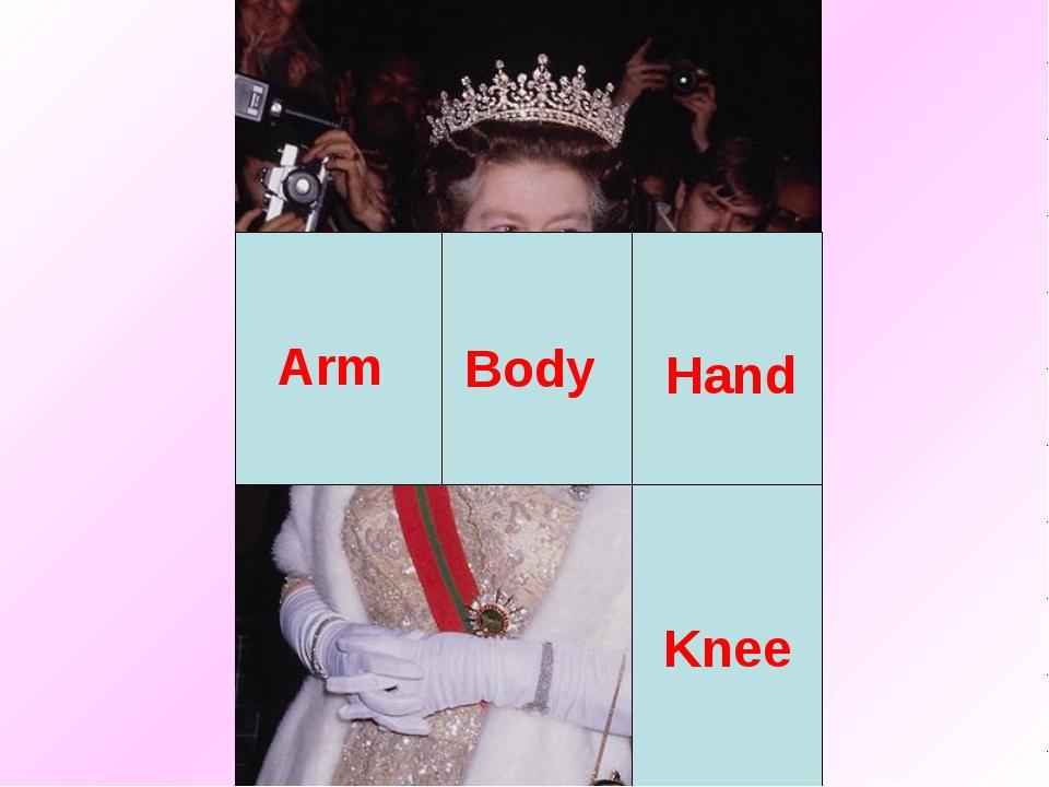 Body Arm Hand Knee