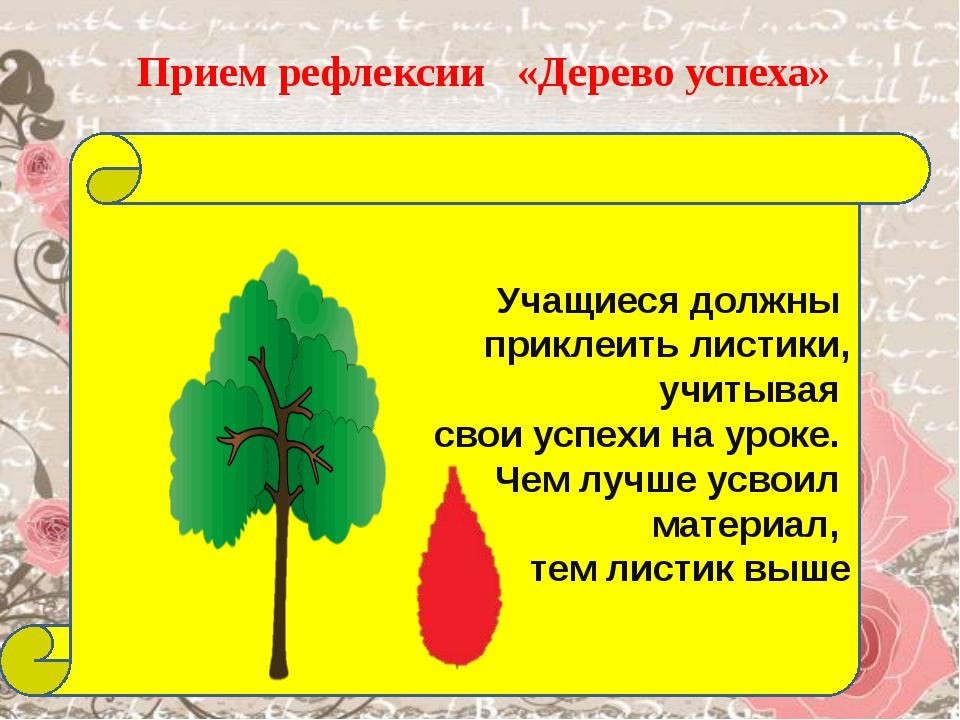 Цветы деревьев картинки и названия вообще, потенциальных