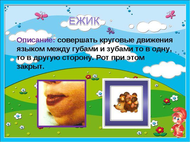 образец Описание: совершать круговые движения языком между губами и зубами то...