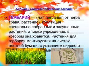 Большой Энциклопедический словарь ГЕРБАРИЙ— (лат. herbarium от herba трава,