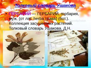 Толковый словарь Ушакова ГЕРБАРИЙ— ГЕРБАРИЙ, гербария, муж. (от лат. herba т
