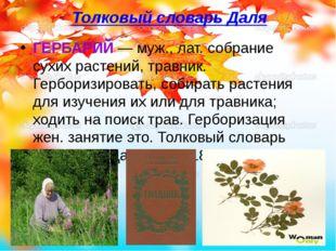 Толковый словарь Даля ГЕРБАРИЙ— муж., лат. собрание сухих растений, травник.
