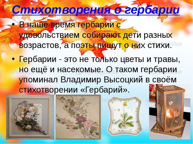 Стихотворения о гербарии В наше время гербарии с удовольствием собирают дети...
