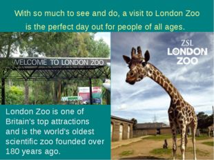 With so much to see and do, a visit to London Zoo is the perfect day out for