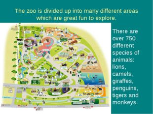 The zoo is divided up into many different areas which are great fun to explor