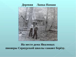 На месте дома Яналовых пионеры Сернурской школы сажают берёзу. Деревня Лапка