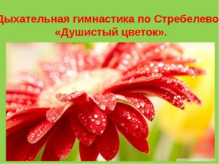Дыхательная гимнастика по Стребелевой «Душистый цветок».