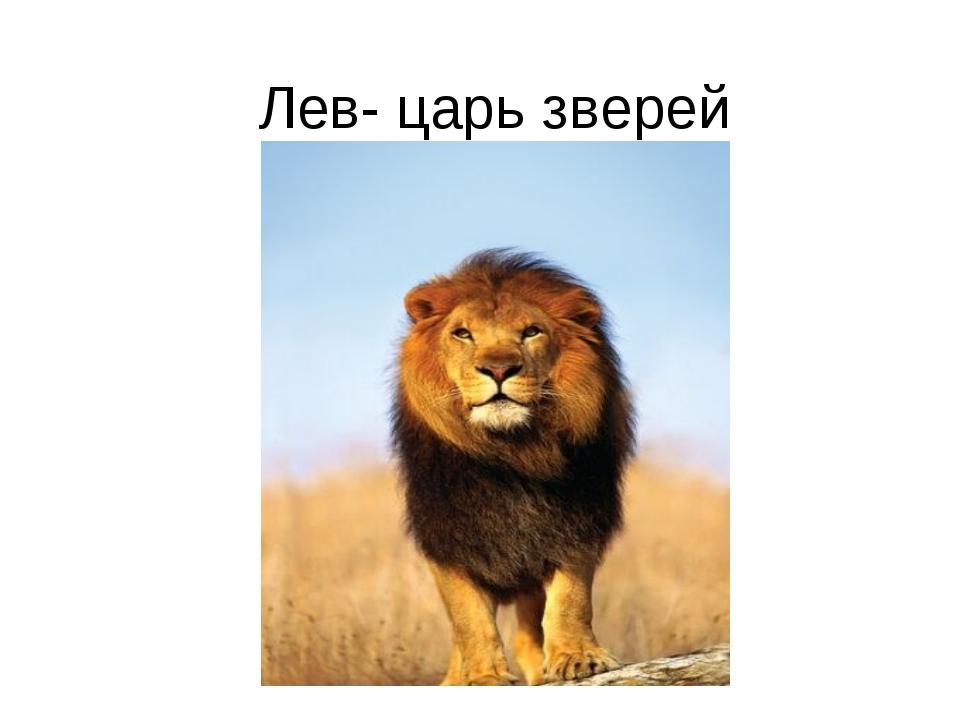 Лев- царь зверей