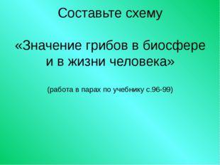 Составьте схему «Значение грибов в биосфере и в жизни человека» (работа в пар