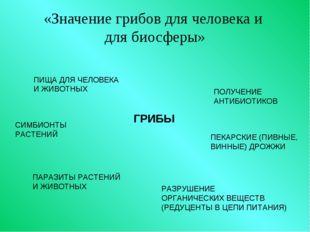 «Значение грибов для человека и для биосферы» ГРИБЫ ПИЩА ДЛЯ ЧЕЛОВЕКА И ЖИВО