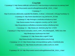 Ссылки: Страница 5: http://www.rukikryki.ru/home/317-kak-borotsya-s-plesenyu-