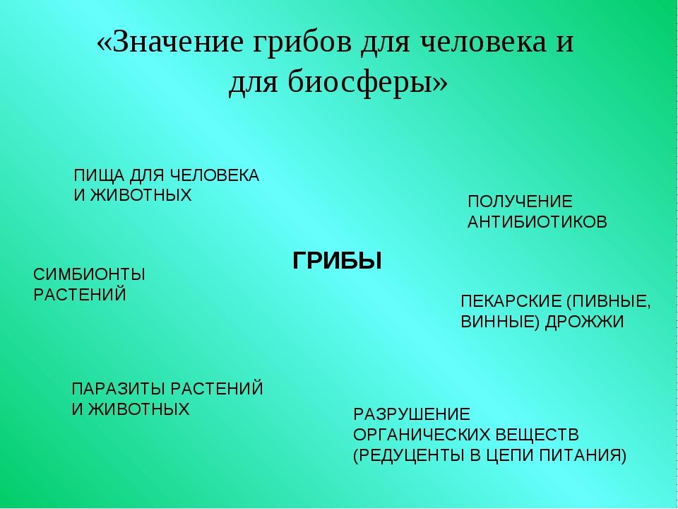 «Значение грибов для человека и для биосферы» ГРИБЫ ПИЩА ДЛЯ ЧЕЛОВЕКА И ЖИВО...