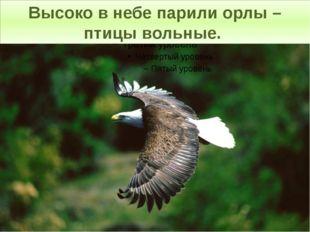 Высоко в небе парили орлы – птицы вольные.