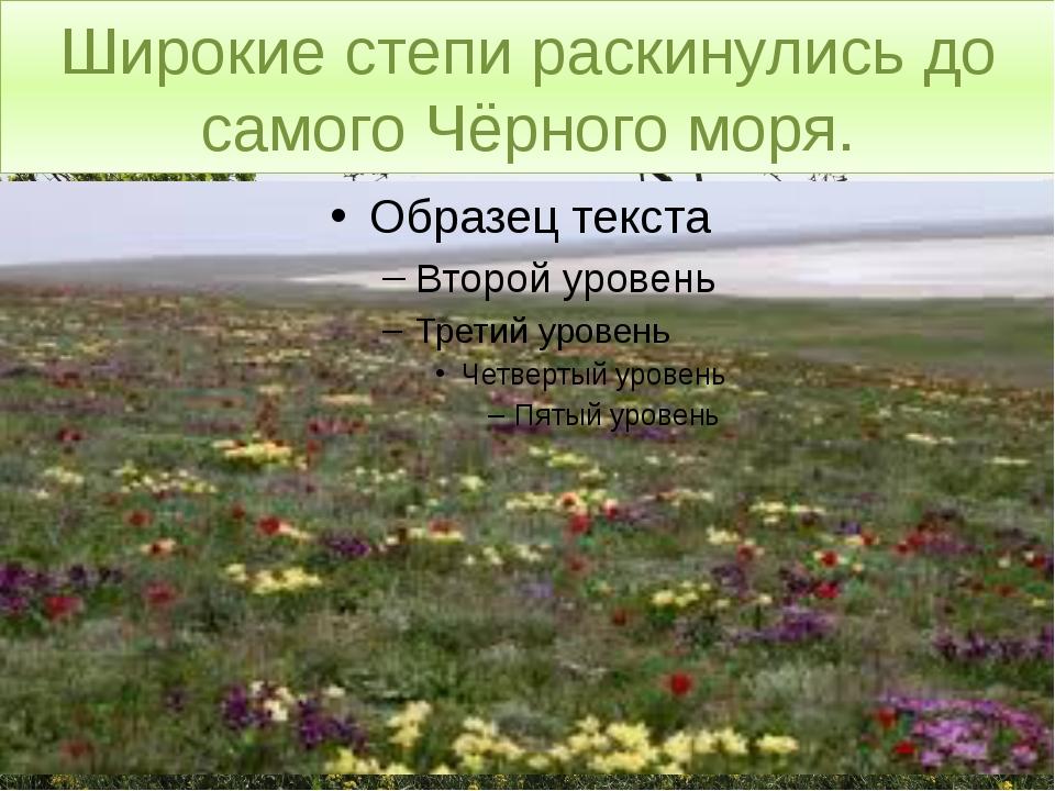 Широкие степи раскинулись до самого Чёрного моря.