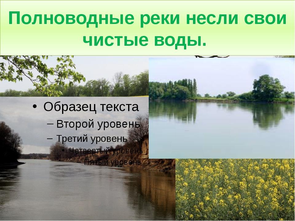 Полноводные реки несли свои чистые воды.